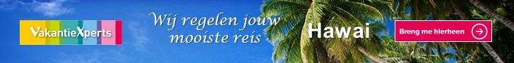 ad-hawai-xperts