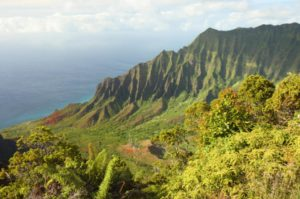 full-day-kualoa-ranch-adventure-in-oahu-109557