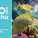go-oahu-card